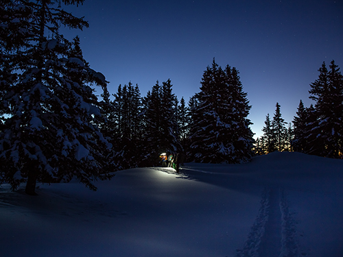 evening snowshoeing in megeve, guide, ski instructor